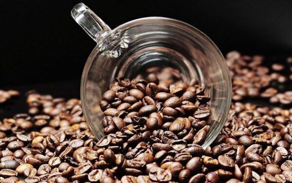 kávový bob